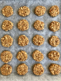 vegan_oat_cookies