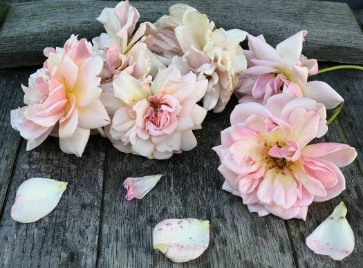 Garden roses recipe